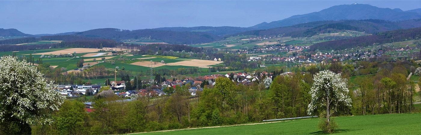 Blick über die Gemeinde Rümmingen